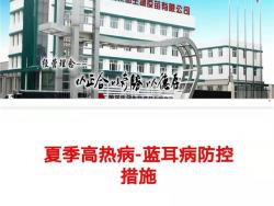 【美瑞大讲堂】第151期:夏季猪高热病防控